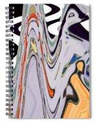 The Guru Descends The Mountain Spiral Notebook