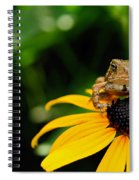 The Harbinger Spiral Notebook