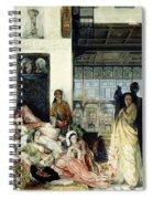 The Harem Spiral Notebook