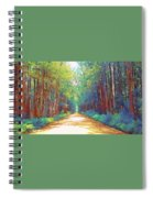 The Haunted Swamp  Spiral Notebook