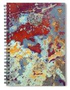 The Headache Spiral Notebook