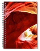 The Heart And The Dog Spiral Notebook