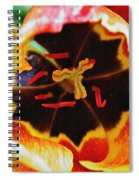 The Heart Of The Matter 2 Spiral Notebook