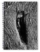 The Hermit In The Woods Spiral Notebook