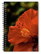 The Hibiscus Macro Spiral Notebook