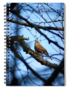 The Hiding Singer. Dunnock Spiral Notebook