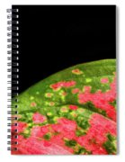 The Hills Of Mars Spiral Notebook