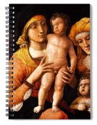 The Holy Family With St Elizabeth And St John The Baptist 1505 Spiral Notebook