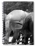 The Horses Of Mackinac Island Michigan 03 Bw Spiral Notebook