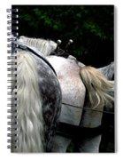 The Horses Of Mackinac Island Michigan 04 Spiral Notebook