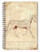 The Horse's Trot Revealed Spiral Notebook