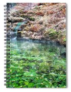 The Hot Springs In Hot Springs Arkansas Spiral Notebook