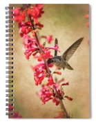 The Hummingbird And The Spring Flowers  Spiral Notebook