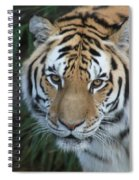 The Hunter Spiral Notebook