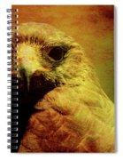 The Hunter . Portrait Of A Hawk . Texture . 40d7877 Spiral Notebook