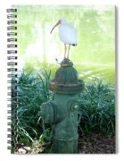 The Hydrant Bird Spiral Notebook