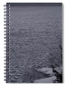 The Ice Float Spiral Notebook