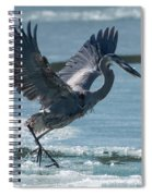 The Ice Skater Spiral Notebook