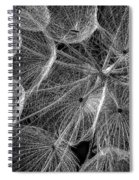 The Inner Weed 2 Monochrome Spiral Notebook