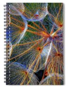 The Inner Weed 2 Oil Spiral Notebook