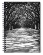 Live Oaks Lane With Shadows - Black And White Spiral Notebook