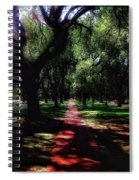 The Journey Spiral Notebook