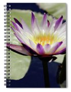 The Joy Of Purple Spiral Notebook