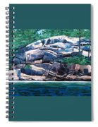 The Jumping Rock - Midday Spiral Notebook