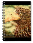 The King Of The Skies Spiral Notebook