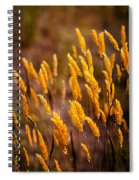 The Last Flowers Of Winter  Spiral Notebook