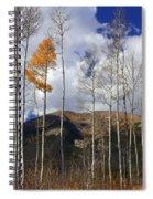 The Last Hurrah Spiral Notebook