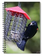 The Last Of The Suet Spiral Notebook