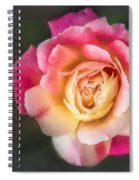 The Last Rose Of Summer, Painting Spiral Notebook