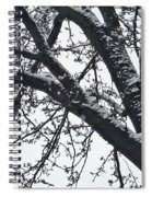 The Last Snow Fall Spiral Notebook