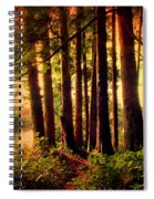 The Last Stand Spiral Notebook