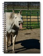 The Laughing Horse Spiral Notebook