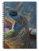The Laughing Tortoise Spiral Notebook