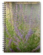 The Lavender Outside Her Window Spiral Notebook