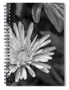 The Lawn King Bw Spiral Notebook