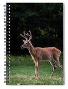 The Leader Spiral Notebook