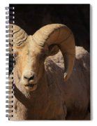 The Leader Of The Pack Spiral Notebook