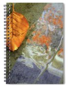 The Leaf And The Reflections Spiral Notebook