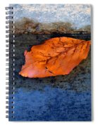 The Leaf On The Stairs Spiral Notebook