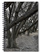 The Leaning Boughs Spiral Notebook