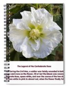 The Legend Of The Confederate Rose Spiral Notebook