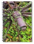 The Lichen Wheel Spiral Notebook