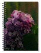 The Lilac Spiral Notebook