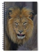 The Lion Dry Brushed Spiral Notebook