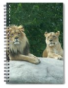 The Lions Spiral Notebook