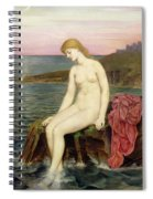 The Little Sea Maid  Spiral Notebook